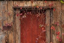 Rust / Photos that embody the soul of the color RUST! / by Patricia Rawlinson