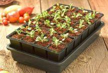 It's Spring--Start Something! / by Gardener's Supply
