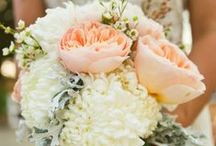 the knot / Ideas and thought-starters for the wedding...  / by Tori Penso