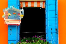 Windows / by Colourful Life