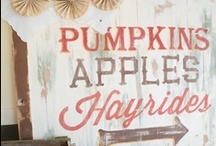 Fall Decorating Ideas / by Dawn McCombs
