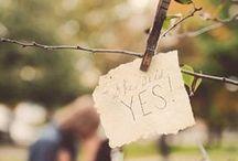 Engagement / by Rebecca VanCuyk