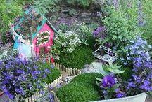 Fairy garden / by Rebecca VanCuyk