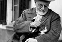 Matisse / by Claudia Galbois