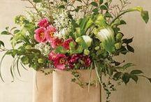 Fleurs et Plantes / by Adeline