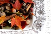 Autumn / by Errina Mercer