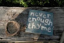 Garden ThYmE / by Sue Baack