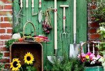 ~Gardening~ / by Patsy Hughes