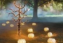 halloween decorating ideas / by Nicole Siemens