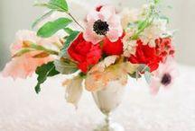 Wedding Design / by Veronica Sheaffer