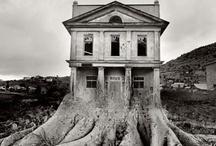 Surreal Estate / by Donna LaFleur
