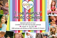 """""""I Love Animals!"""" Photo Contest / by CHARM IT!"""
