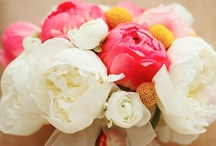 Florals For The Big Day / For stefanie! All of the ideas I love most with the reasons why as well! / by Jennefer Wilson