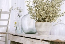 White and Wonderful / by Brayton Interiors