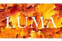 Events @ LUMA / by LUMA