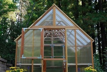 Garden Crazy / Greenhouses, garden beds and other ways to increase garden productivity and functionality.  / by Rose Sniatowski