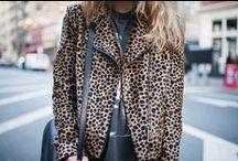 Cheetah Prints / by Courtney Fedge