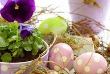 Easter / Easter / by Amanda Tollison