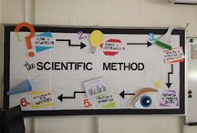 Physical Science Teacher / by Brooke Walsh