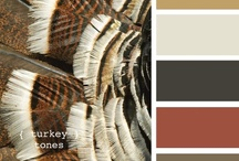 { turkey tones } / by Design Seeds