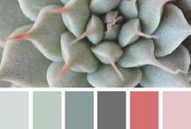 { succulent tones } 6.19.14 / by Design Seeds