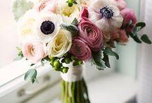 Floral / by Lauren Indvik
