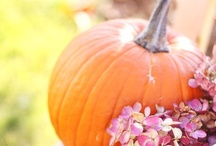 Pumpkin Perfection! / Pumpkin Recipes, Pumpkin Decor, Pumpkin Crafts and Ideas. / by Laurie Leal