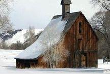 If I Had A Farm... /   / by Tonya Bundy