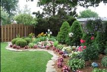 Gardening / by Susan Hartman