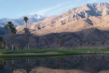 Palm Springs Recommendations / by Elite Destination Homes