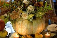 Pumpkins, and pumpkin goodies!!! / I love pumpkins, I hope you enjoy this board as much as I do.. / by Joan Ducksworth