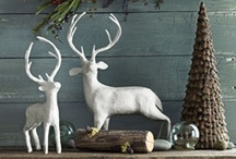 Home | Holiday Decor / by J.J. Springer