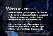 Werewolves / by Summer Meredith
