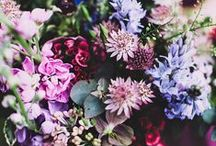 Beautiful Bouquets / by Amazon.com/Fashion
