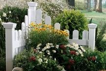 Flowers & Gardening / by Kimberly Jones