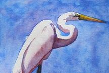 Beach Creatures - Fine Art by Barbara Rosenzweig / To discover my work and learn more about me please visit http://BarbaraRosenzweig.etsy.com and http://WatercolorsbyBarbara.fineartamerica.com/.   / by Barbara Rosenzweig Art