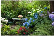 Beautiful Landscaping Gardens / by Lawncare Plus Design~Landscaping Hardscaping Patios Gardening