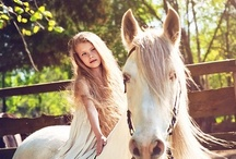 Horses, Horses, Horses! / Horses have always had a special place in my heart. My dad wouldn't allow me to keep one on our farm so thank goodness I could ride our neighbor's horses whenever I wanted! / by Robin Hopes