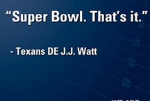 Houston Texans / I love my team! #FanHard # BullsOnParade / by Juanita