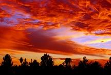 Alluring Arizona / by HelmsBriscoe