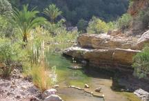 Agadir & sud Atlas Maroc - Agadir & south Atlas Morocco / by Michel B