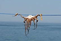 Crete - Greece / by Michel B
