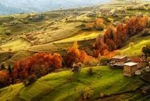 Inspiration of autumn / by nastasia chu