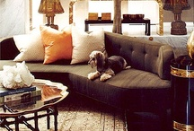 Pets At Home / by Dalani Home & Living UK