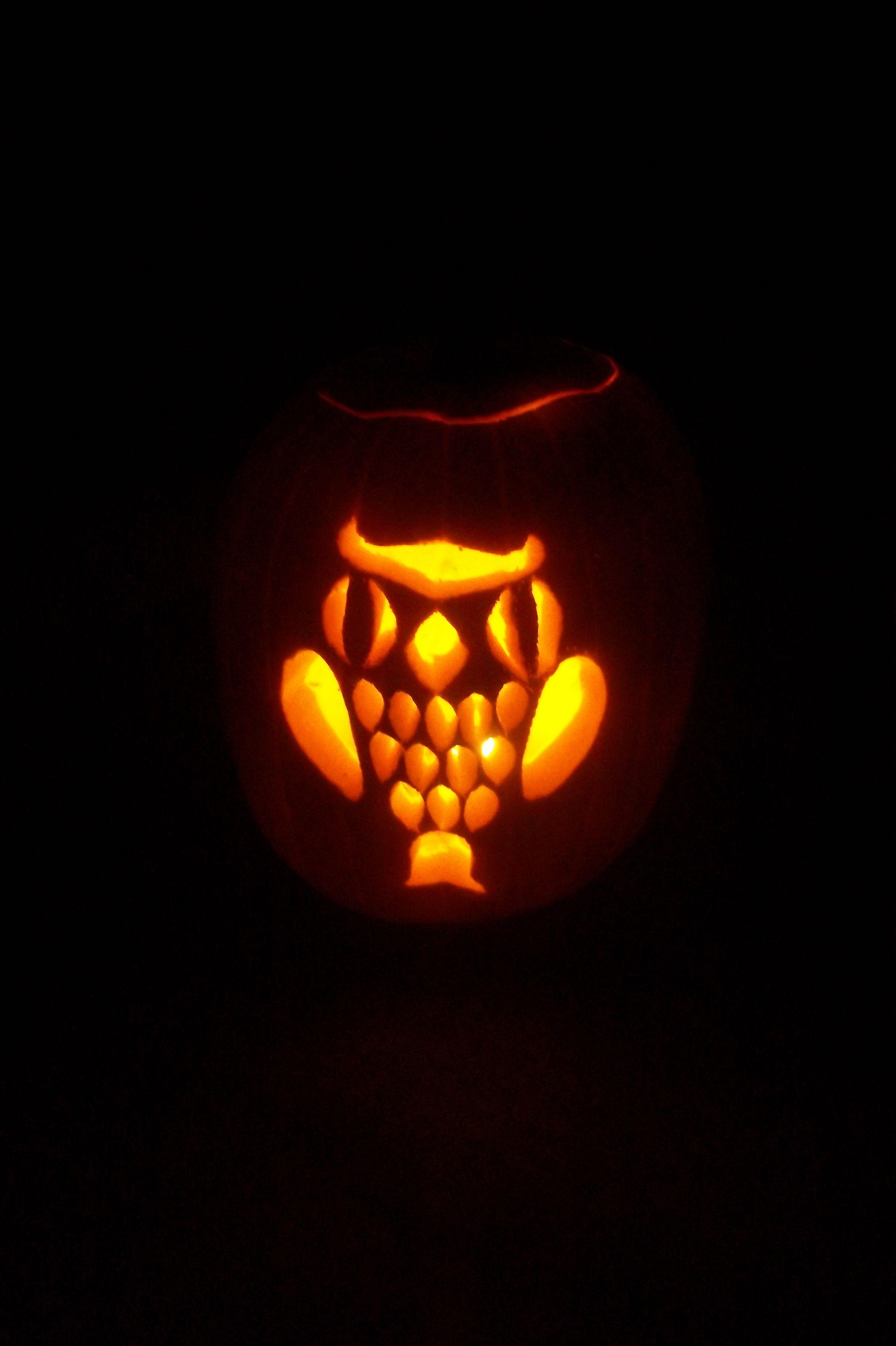 Owl pumpkin carving halloween pinterest