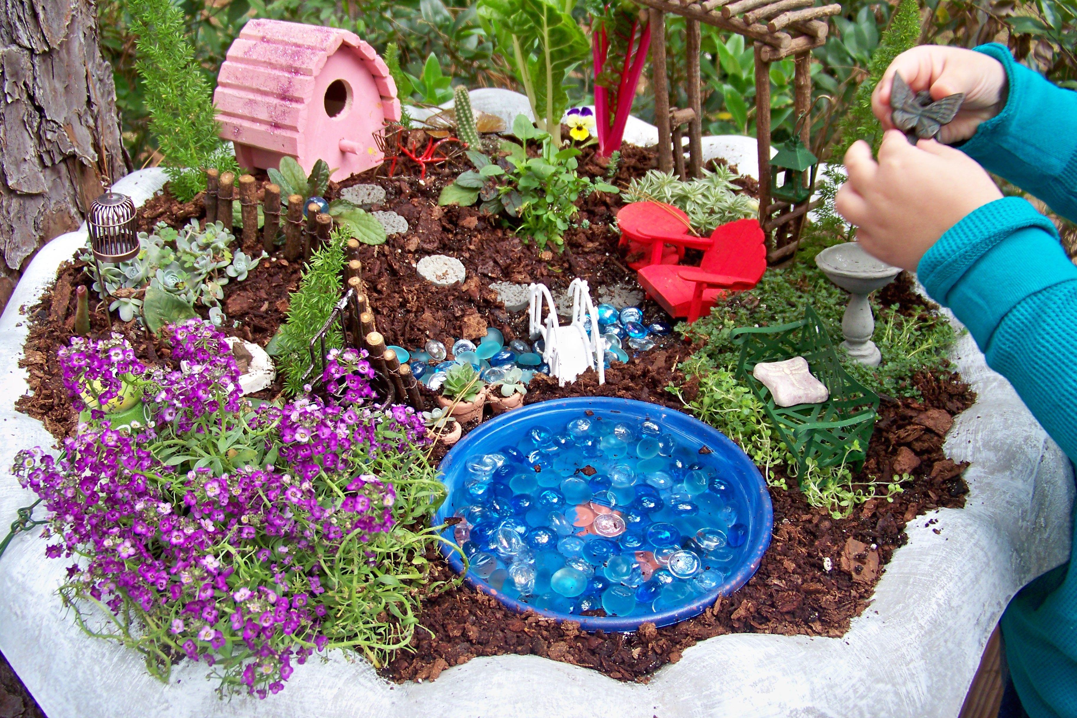 Fairy Garden Plants Gardening Ideas Pinterest