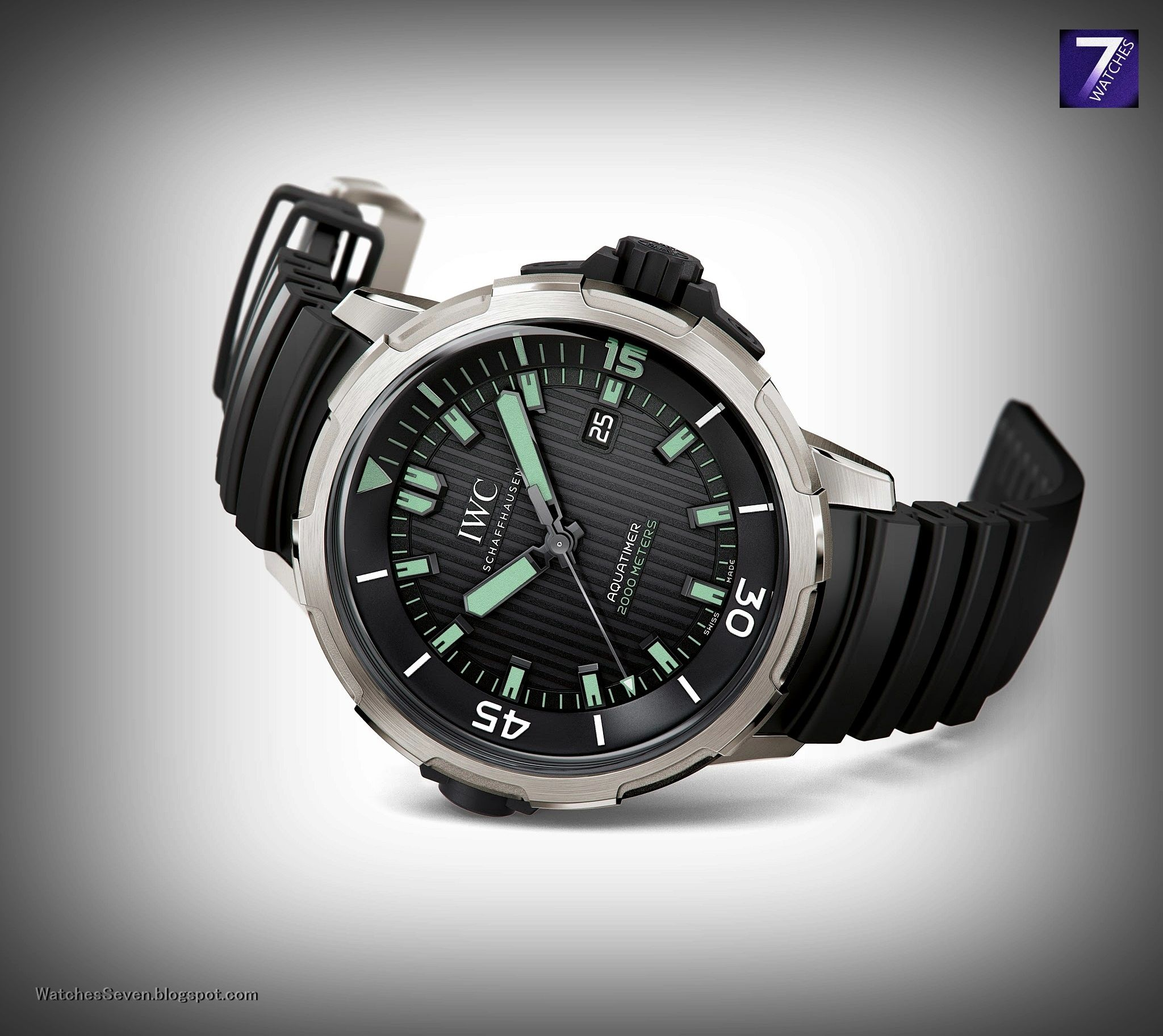 Watches 7: IWC