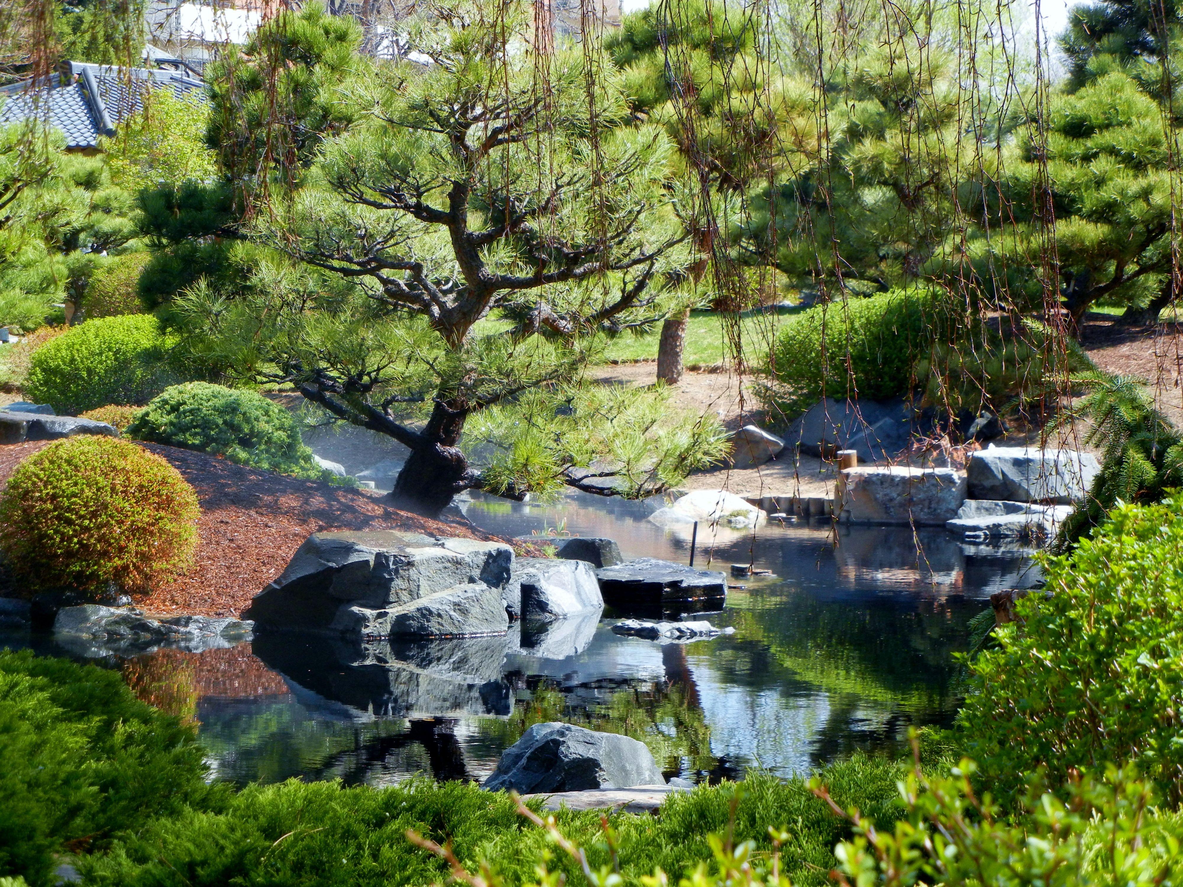Denver Botanical Garden Moving To Colorado Pinterest