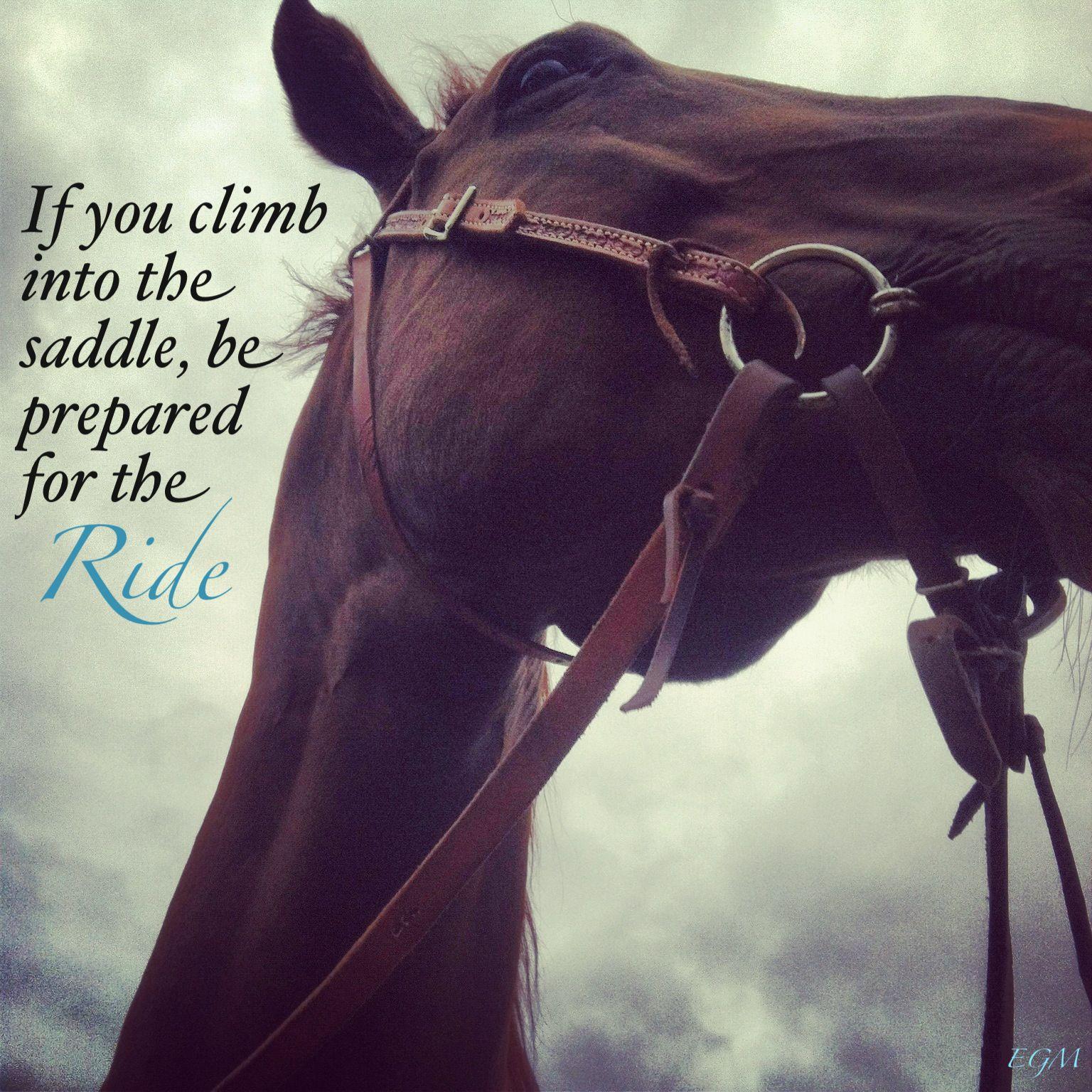 Pinterest Horse Quotes. QuotesGram