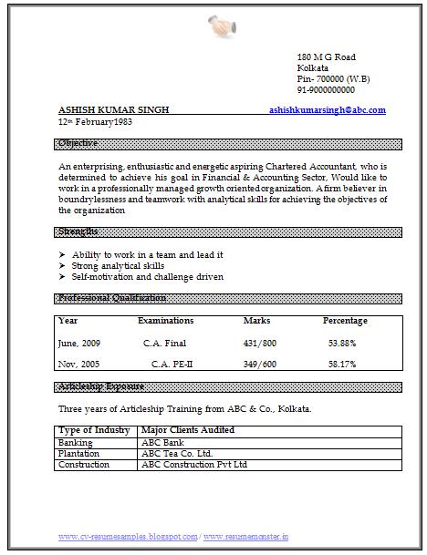 Curriculum Vitae Sample Doc